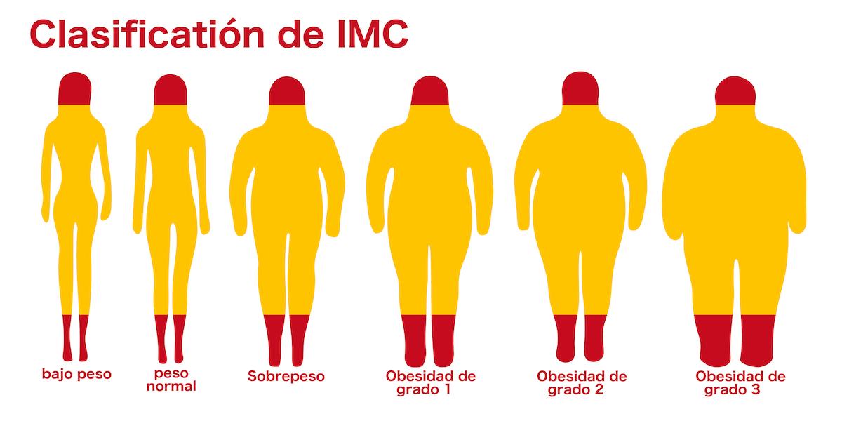 El Índice de Masa Corporal (IMC) clasifica de magro a obeso